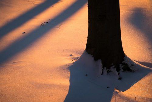 schatten auf dem von der abendsonne gefärbten schnee