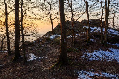 winter abschied schnee reste sonne wald felsen