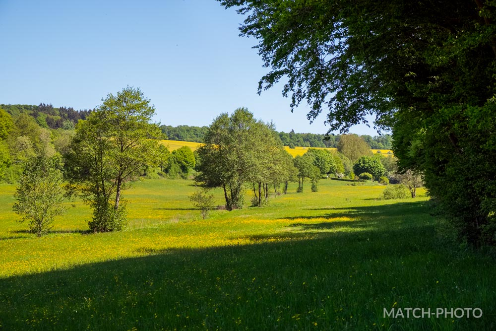 sunny day in germanys countryside