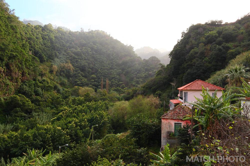 Gemütliche Häuser am Rand des Urwald.