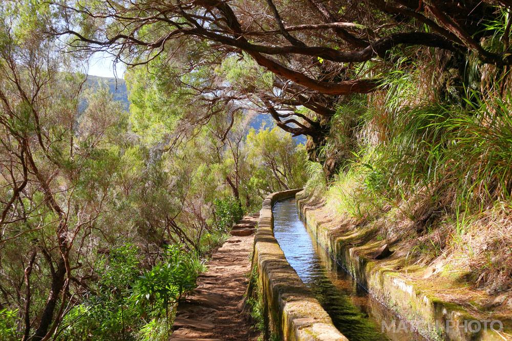 Wanderweg durch die Natur an einer Levada