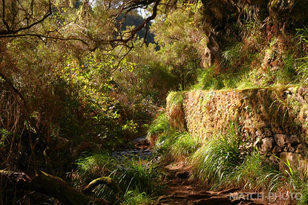 Wandern in der Nachmittagssonne auf Madeira